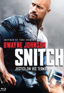 Snitch (2013) BRRip 420p 300MB Dual Audio