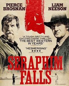 Seraphim Falls (2006) BRRip 420p 300MB Dual Audio