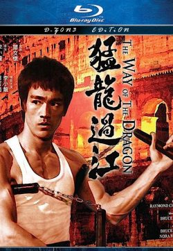The Way of the Dragon (1972) 420p 300MB Dual Audio