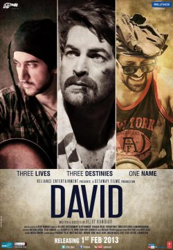 David (2013) Hindi Movie DVDRip 720P