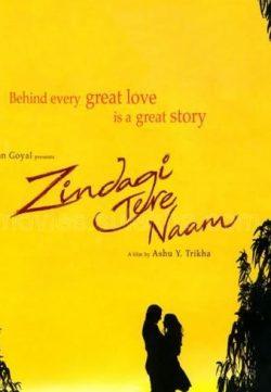 Zindagi Tere Naam (2012) 300MB Movie  Downloade