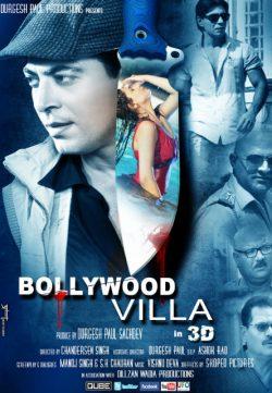 Bollywood Villa 2014 Hindi Movie Free Download 480p 350MB