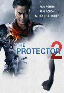 The Protector 2 (2013) Dual Audio Free Download In HD 480p 300MB