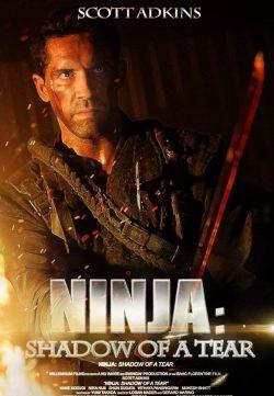 Ninja Shadow of a Tear (2013) Download Hindi Dubbed 480p 250MB