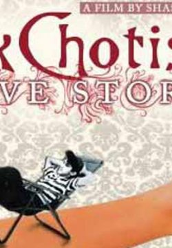 Ek Chhotisi Love Story (2002) Hindi Movie 350MB