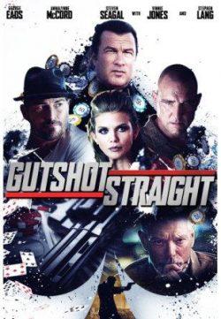 Gutshot Straight (2014) Hindi Dubbed Download 250MB 480p