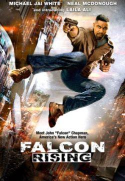 Falcon Rising (2014) Hindi Dubbed Download 200MB 480p
