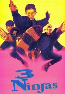 3 Ninjas (1992) 200MB BRRip 480P Dual Audio 480p