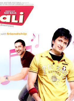 De Taali (2008) Hindi Movie DVDRip 480P 300MB Download
