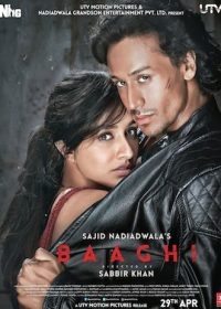 Baaghi (2016) Watch Hindi Full Movie DVDRip Online