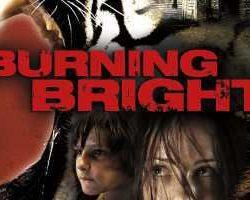 Burning Bright 2010 Hindi Dubbed HDRip 480p