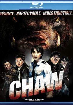 Chaw 2009 Hindi Dubbed HDRIp 200MB