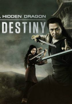 Crouching Tiger Hidden Dragon Sword of Destiny (2016) 480p DVDRip