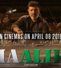 Maalik Pakistani Full Movie Watch Online DVDRip 480p