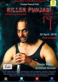Killer Punjabi (2016) Punjabi Movie DVDScr 200MB