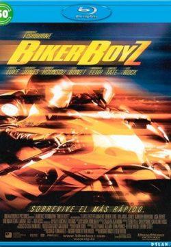 Biker Boyz 2003 Hindi Dubbed BluRay 300MB