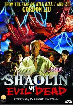 Shaolin Vs Evil Dead 2004 Hindi Dubbed DVDRip 300MB