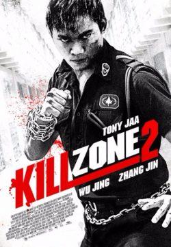 Kill Zone 2 2015 480p BluRay 700mb
