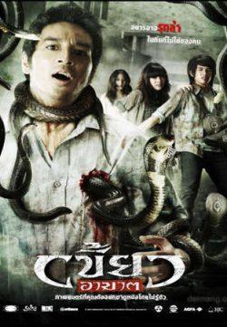 The Intruder 2010 Dual Audio DVDRip 720p
