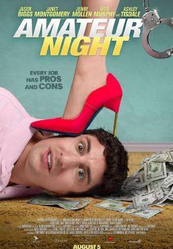 Amateur Night 2016 720p DVDRip 550mb