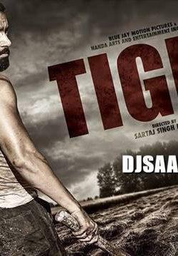 Tiger (2016) Punjabi Movie 900MB HDRip 720p