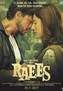 Raees (2017) Hindi DesiScr Rip 750MB