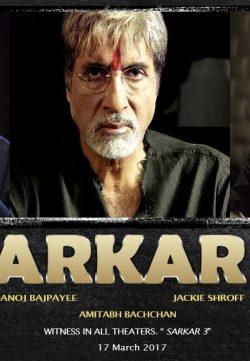 Sarkar 3 (2017) Hindi Desi pDVDRip 700MB