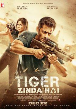 Tiger Zinda Hai 2017 Hindi Movie 720p BluRay 900MB
