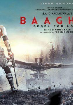 Baaghi 2 2018 Hindi Pre-DVDRip 720p