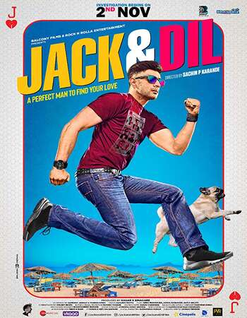Jack And Dil 2018 Hindi 400MB HDTV 480p